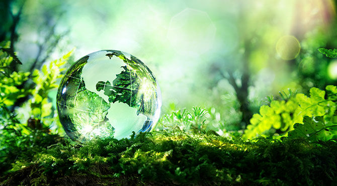 Illustration of a green globe in a forest