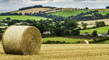 Landscape view of a UK farm